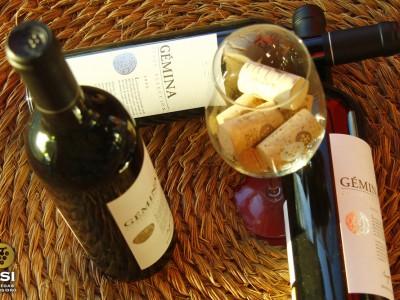 Detalle de vinos Gémina sobre un cofín